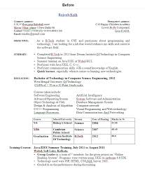 Professional Resume Format For Fresher by A Professional Resume For Fresher Resume Format For Nursing