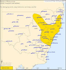bureau of metereology bureau of meteorology issues severe weather warning for large hail