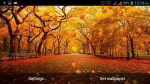 free screensavers for thanksgiving autumn leaves live wallpaper android apps on google play