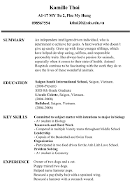 Ssis Resume Sample by Professionalism Resume And Self Reflection U2013 Kamille U0027s Blog