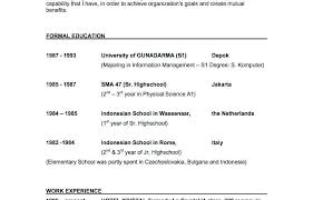 format cv formal indonesia sles ofesumes objectives exles cv career sle curriculum