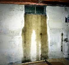 wellduct basement window well drain prevent basement flooding