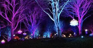 festive free events in asheville date guide asheville