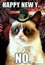 Happy New Year Cat Meme - grumpy cat new year yes memes