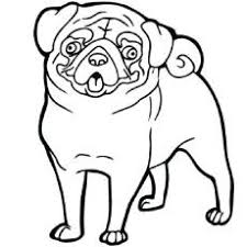 pug coloring color pages craft