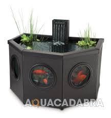 blagdon affinity mocha fish pond koi coldwater patio aquarium pool