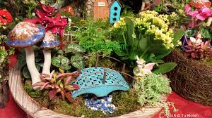 blooms diy fairy garden tips chicago garden landscape design