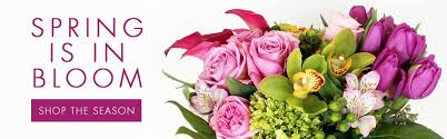 same day delivery flowers san mateo florist same day delivery since 1933 ah sam florist