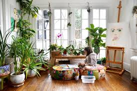 Plants For Dark Rooms by Plants For Depression Cures How To Beat Winter Depression