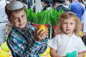 sukkot for sale the of sukkot boy with blond