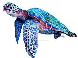 sea turtle by sophiebrownart on deviantart