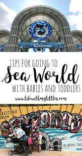 16 tips for going to sea world with a baby or toddler life with