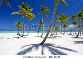 on tropical island clear blue stock photo 193725014