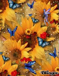 sunflower butterfly picture 31819277 blingee com