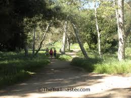 hike griffith park and the hollywood hills u2013 john mckinney