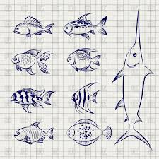 sketch fish on the notebook page vector image 125602 u2013 rfclipart