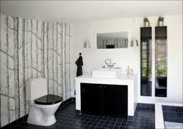 Cost Of Master Bathroom Remodel Bathroom Marvelous Luxury Tubs Pictures Of Bathrooms Average