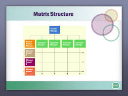 organizational culture ppt download matrix structure