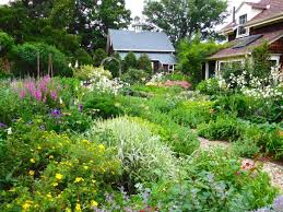 Cottage Garden Design Ideas Photos