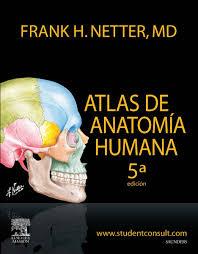 Human Anatomy Physiology Pdf Library