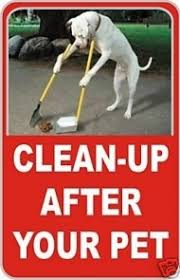 Dog Poop Meme - 15 best dog poop signs pictures dogtime