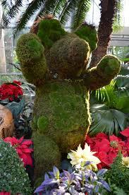 visiting the u s botanic garden conservatory washington dc