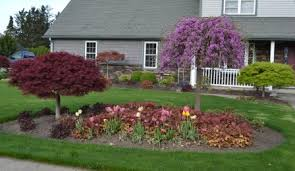 landscape ideas landscaping ideas what plant goes where in the landscape