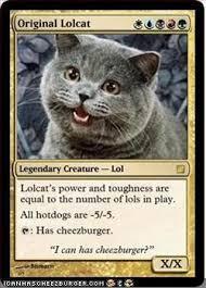 Lol Cat Meme - fake magic card memes 004 lolcat has cheezburger comics and memes