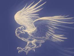 eagle digital sketch by smcnonnahs on deviantart