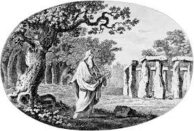 druid celtic knowing or finding the oak tree member of the