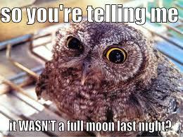 Full Moon Meme - full moon quickmeme