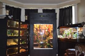 reptile room update monsterfishkeepers com