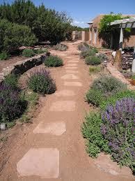 Xeriscape Landscaping Ideas Xeriscape Ideas Home Interiror And Exteriro Design Home Design