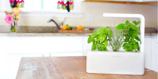 Click And Grow Refills The New Click U0026 Grow Herb Garden Does Everything But Harvest
