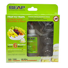 Homemade Fly Trap by Amazon Com Beapco 6 Pack Drop Ins Fruit Fly Traps Home Pest