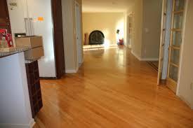 Best Hardwood Floor Steam Mop Bissell Steam Mop On Hardwood Floors Floor Decoration Wood