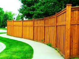 Backyard For Dogs by Patio Picturesque Bamboo Reed Fencing Style How Install