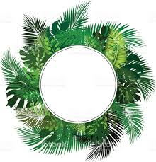 circle blank sign with tropical leaves vector template stock