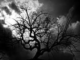 black tree by donsalieri91 on deviantart