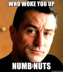 De Niro Meme - who woke you up numb nuts de niro meme generator