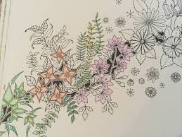 work in progress secretgarden jardinsecreto johannabasford