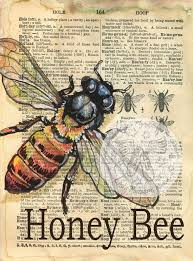 best 25 bee drawing ideas on pinterest bee tattoo honey bee