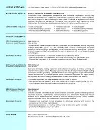 Core Competencies Examples For Resume by 100 Sales Example Resume Sales Engineer Resume Sample
