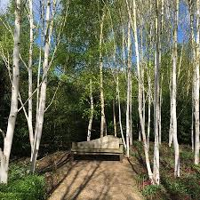 Anglesey Abbey Winter Garden - lode mill picture of anglesey abbey lode tripadvisor