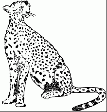 amazing leopard coloring pages printable cheetah coloring