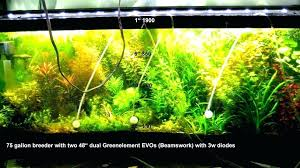 marineland aquatic plant led lighting system w timer 48 60 marineland aquatic plant led light with timer all for the plus pro