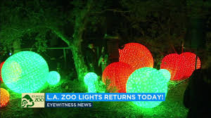 when do the zoo lights start los angeles zoo s holiday zoo lights start twinkling abc7 youtube