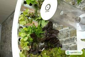 best grow lights for vegetables indoor veggie garden indoor apartment garden indoor apartment