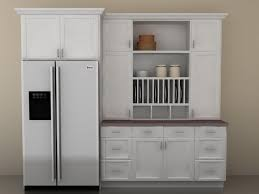 Wall Pantry Kitchen Cabinets  New Interior Ideas  WellOrganized - Pantry kitchen cabinets