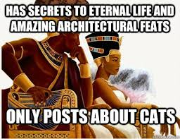 Egyptian Memes - no but egyptians aren t black 140357873 added by purdon at